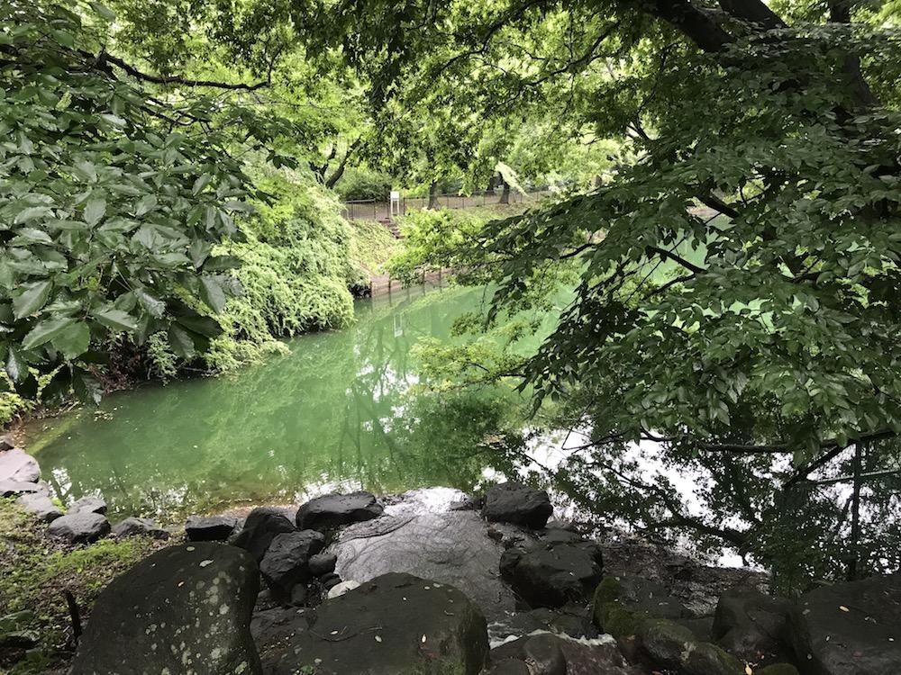 小野池あじさい公園
